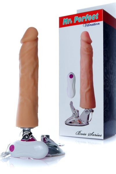 Wibrator-Mr. Perfect Vibration 12 functions